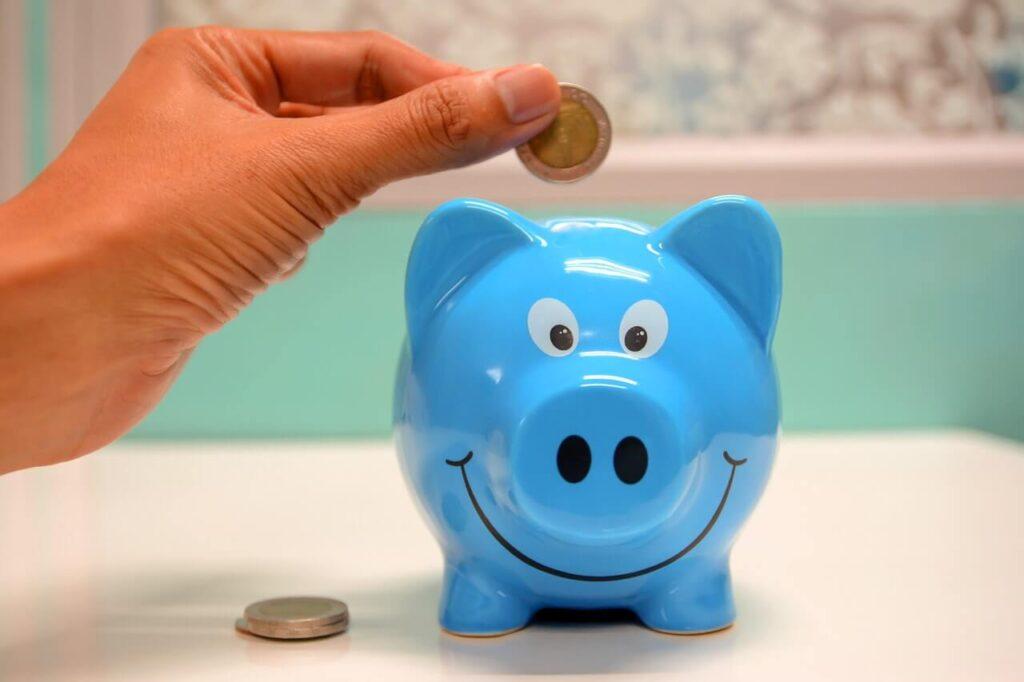 accounting fees